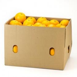 J012 - Naranja Valencia 10 KG